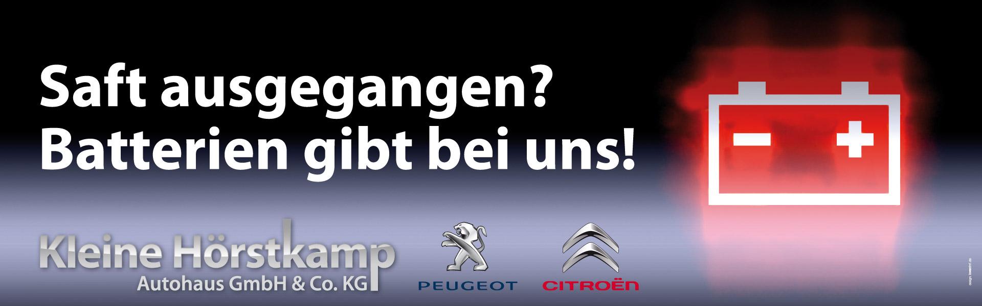 Banner_Kleine-Hörstkamp_Batterien